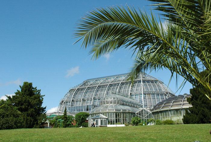 Berlin spart Energie Solarenergie im Botanischen Garten entdecken_Grafik_BGBM