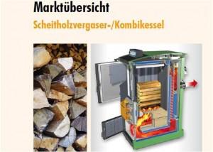 Neue Marktuebersicht fuer Scheitholzvergaserkessel und Kombikessel_Grafik_FNR