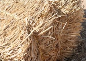 Strohheizungen Feinstaub und Asche machen Filter und widerstandsfaehige Werkstoffe noetig