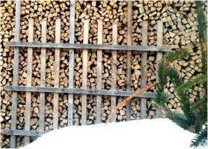 Werden Holzpellets und Brennholz knapp_Foto_heizungsfinder.de
