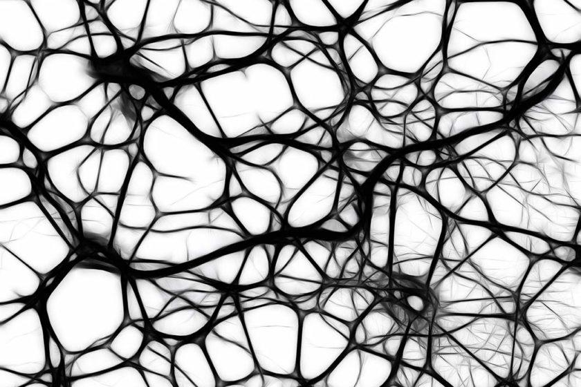 Neuronen