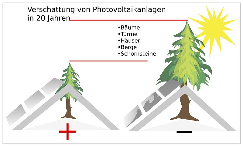 Grafik mit Verschattung der Photovoltaikanlage durch einen Baum aktuell und in 20 Jahren.